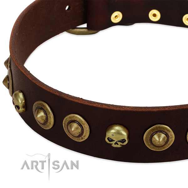 Stylish studs on full grain genuine leather collar for your pet