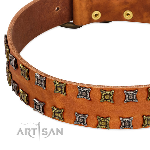 Durable leather dog collar for your impressive canine