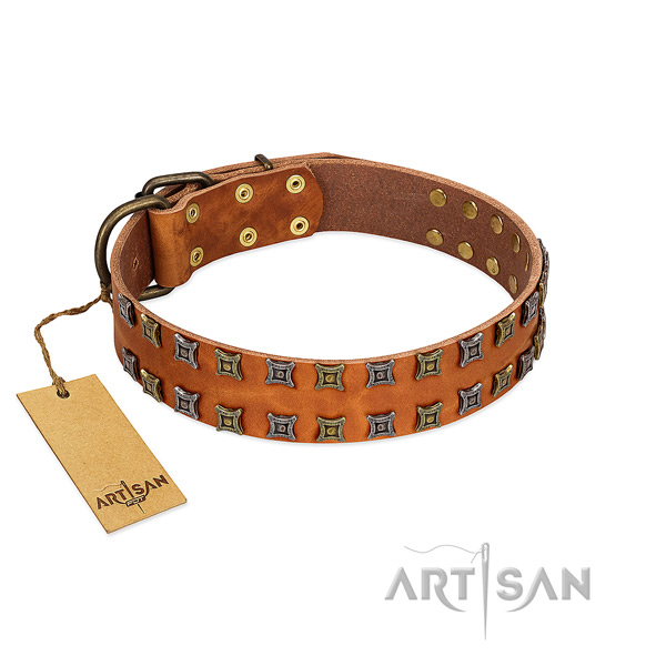 Soft leather dog collar with adornments for your dog