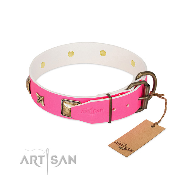 Rust-proof hardware on leather collar for stylish walking your four-legged friend