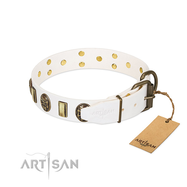 Rust-proof hardware on full grain leather collar for basic training your pet