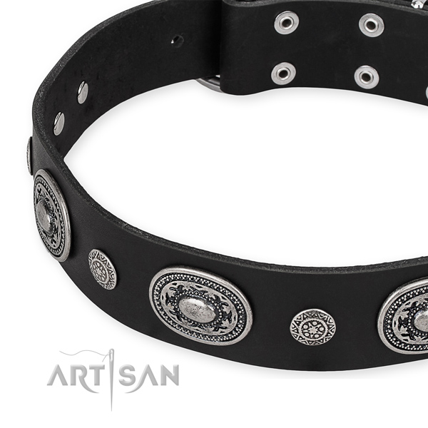 Top rate leather dog collar made for your handsome doggie