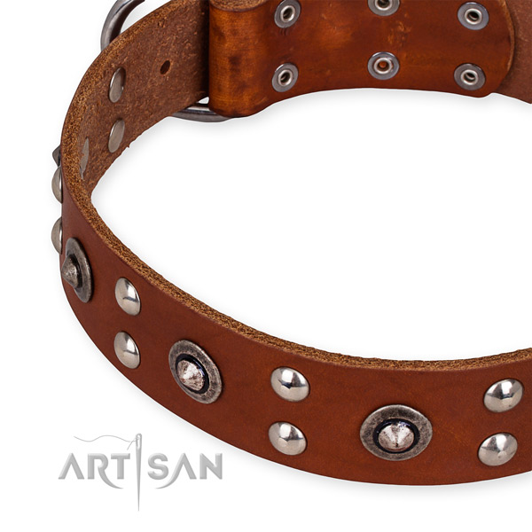 Genuine leather collar with reliable buckle for your lovely doggie
