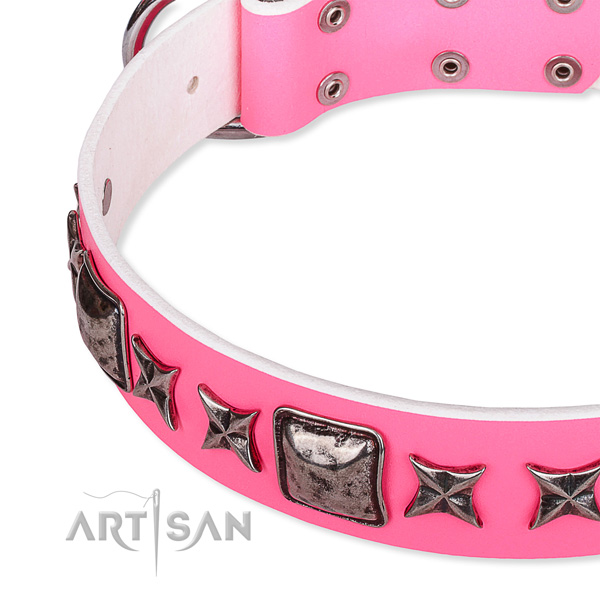 Everyday use adorned dog collar of top notch full grain genuine leather