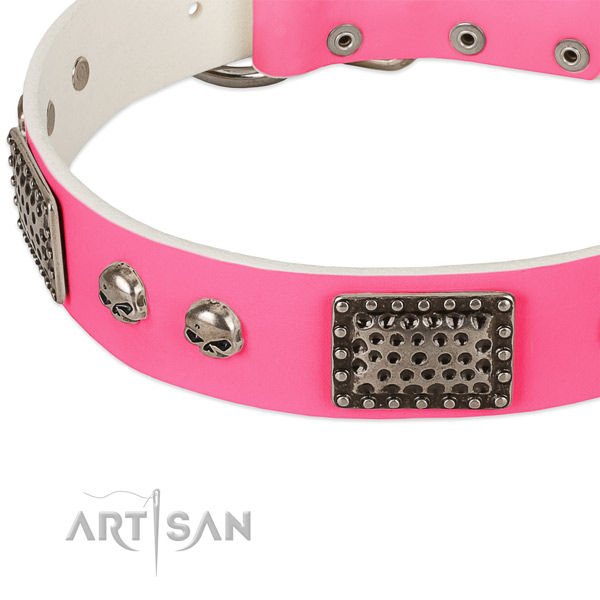 Reliable studs on natural leather dog collar for your four-legged friend