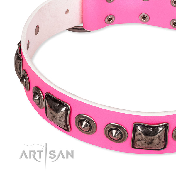 Top rate full grain natural leather dog collar made for your lovely four-legged friend