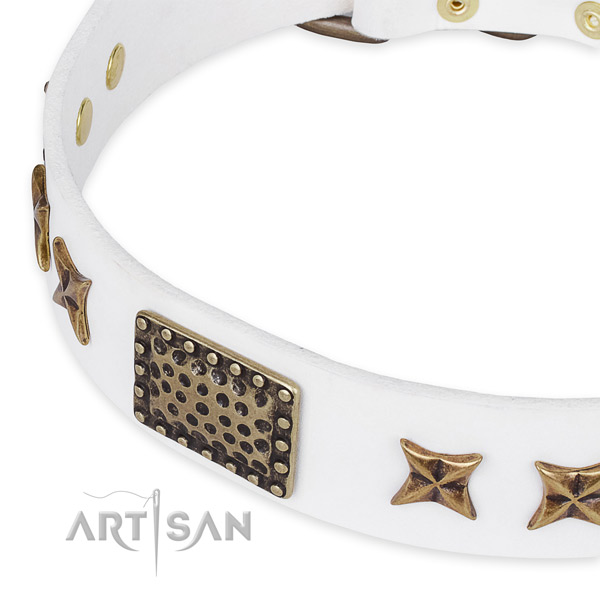 Leather collar with durable hardware for your handsome canine