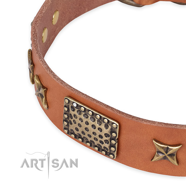 Natural genuine leather collar with durable traditional buckle for your lovely pet