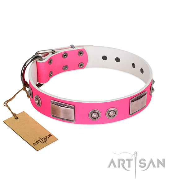 Easy adjustable leather collar with embellishments for your pet