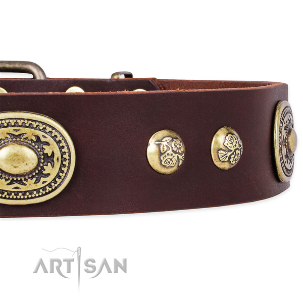 Handmade natural leather collar for your attractive canine