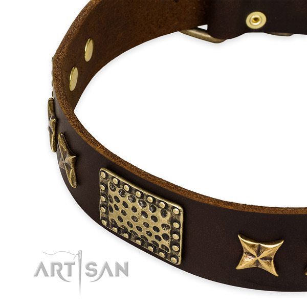 Full grain natural leather collar with durable D-ring for your lovely canine