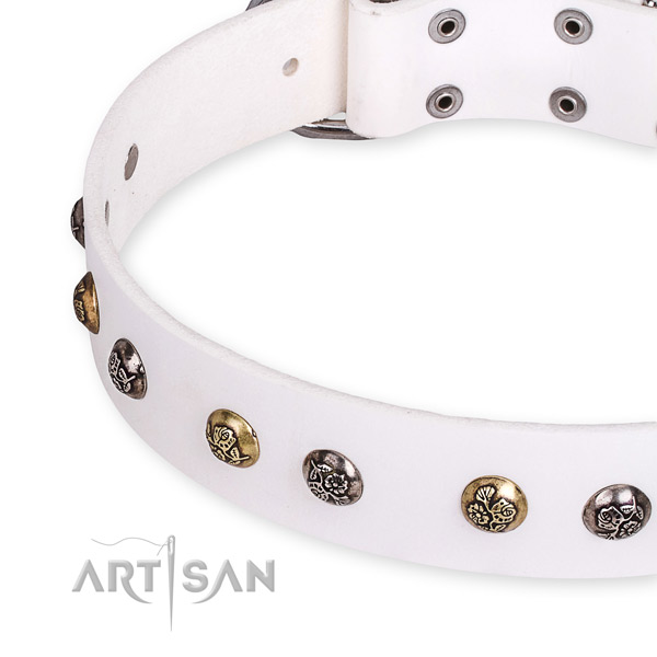 Full grain leather dog collar with exquisite reliable adornments