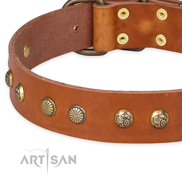 Full grain genuine leather collar with rust resistant D-ring for your attractive canine