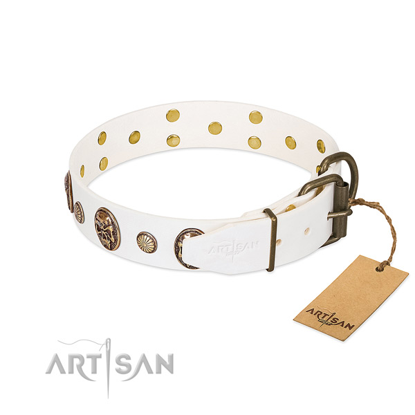 Reliable buckle on leather collar for basic training your canine