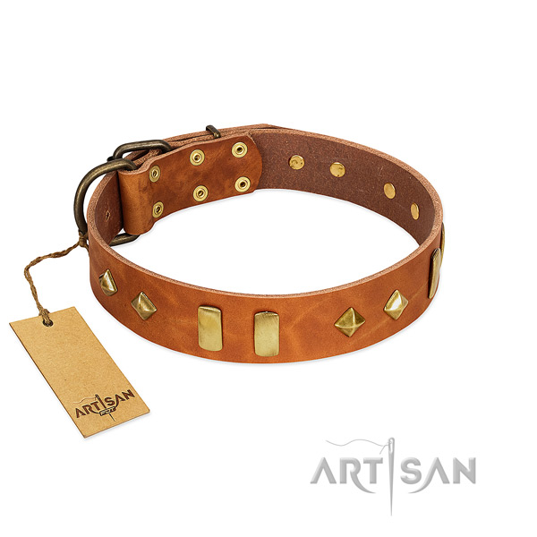 Daily use soft to touch genuine leather dog collar with studs