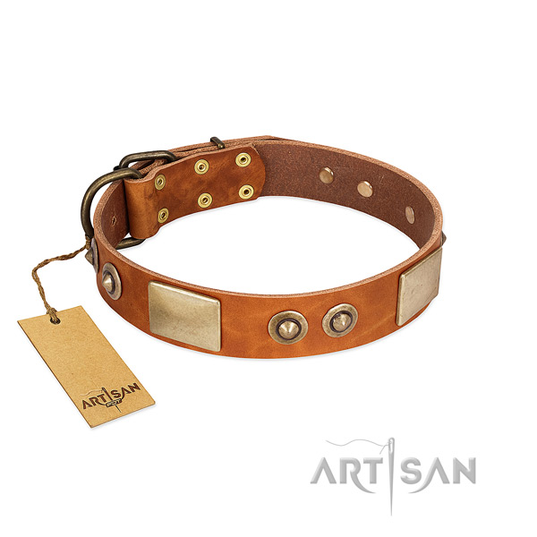 Adjustable full grain genuine leather dog collar for stylish walking your pet