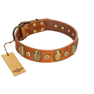 """Crystal Sand"" FDT Artisan Tan Leather English Bull Terrier Collar with Vintage Looking Oval and Round Studs"