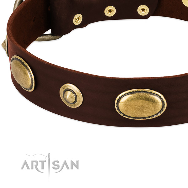 Corrosion proof D-ring on genuine leather dog collar for your pet