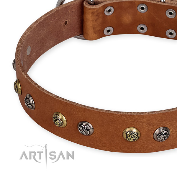 Full grain leather dog collar with top notch reliable embellishments