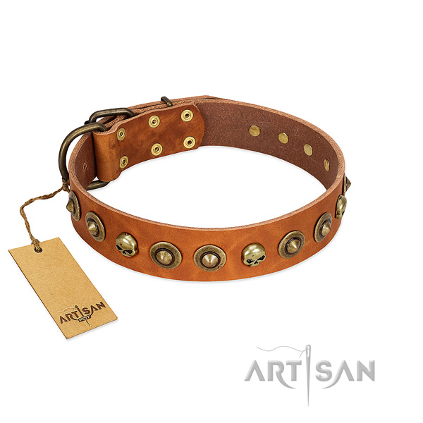 Full grain genuine leather collar with exceptional embellishments for your four-legged friend