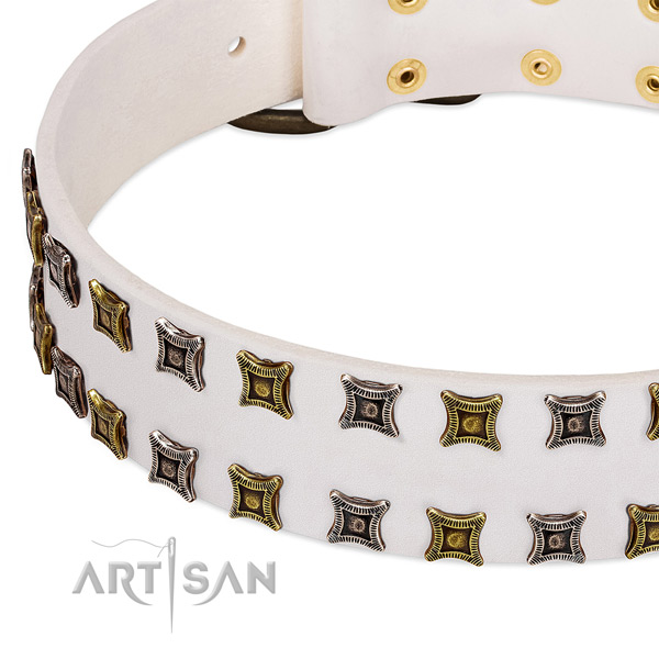 Natural leather dog collar with adornments for your lovely four-legged friend