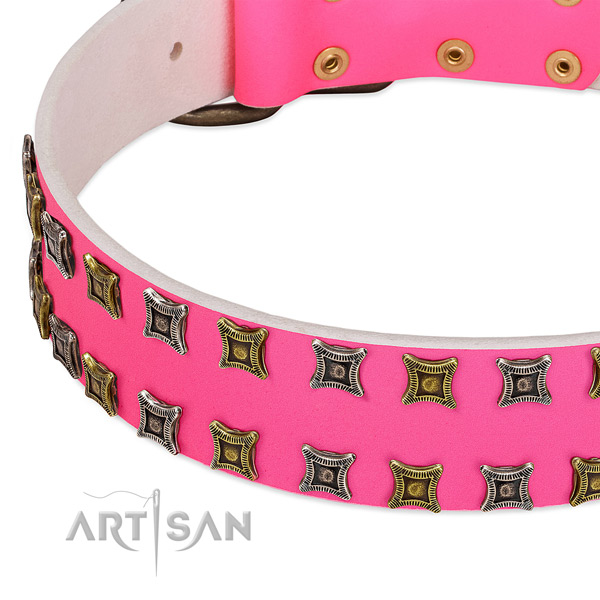 Leather dog collar with designer adornments