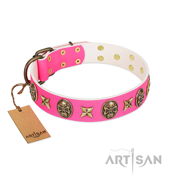 Leather dog collar with durable embellishments