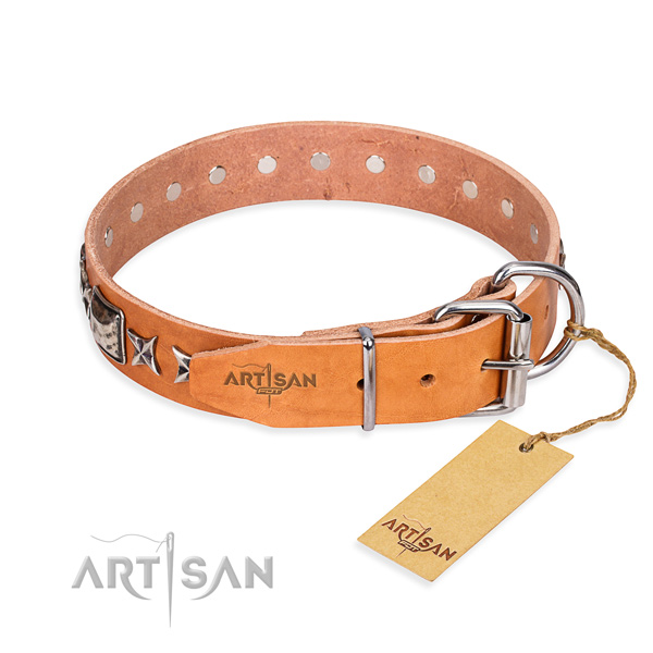 Top notch adorned dog collar of full grain leather