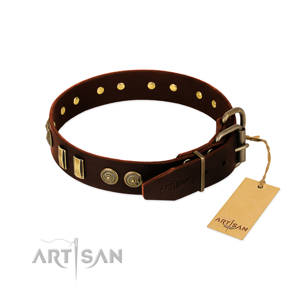 Reliable fittings on leather dog collar for your canine