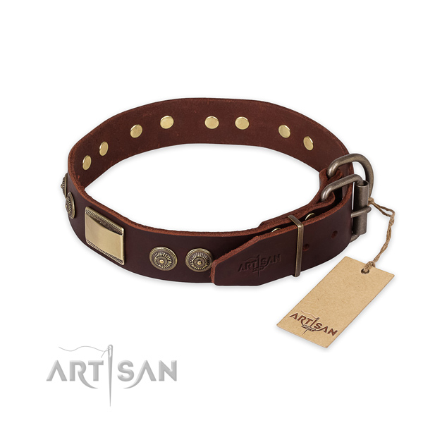 Strong traditional buckle on leather collar for daily walking your dog