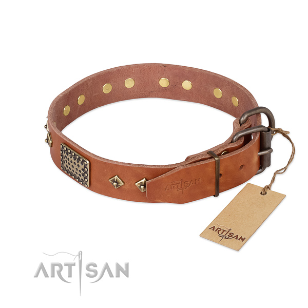 Full grain natural leather dog collar with corrosion resistant traditional buckle and embellishments