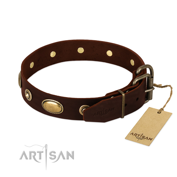 Durable decorations on natural leather dog collar for your canine