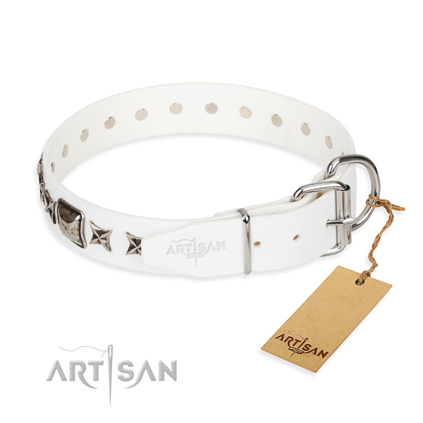 Reliable embellished dog collar of leather