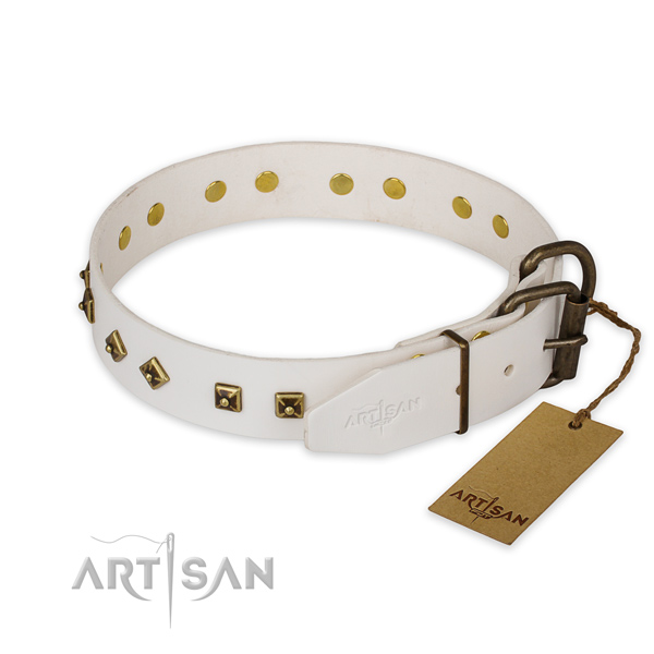 Strong traditional buckle on genuine leather collar for daily walking your dog