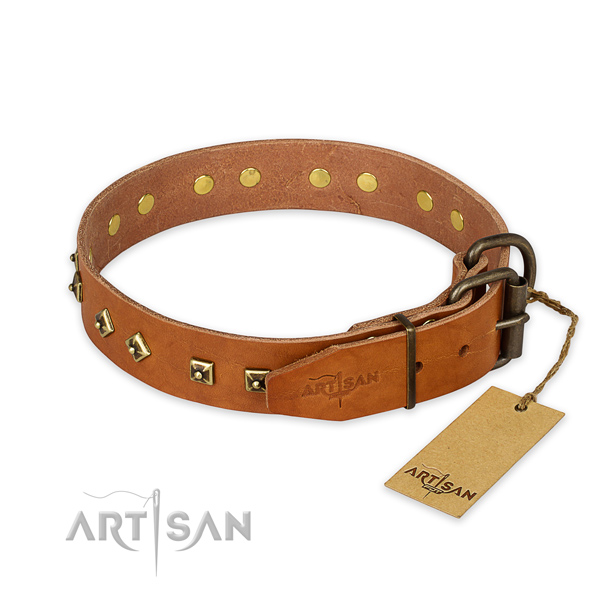 Corrosion proof traditional buckle on leather collar for daily walking your doggie