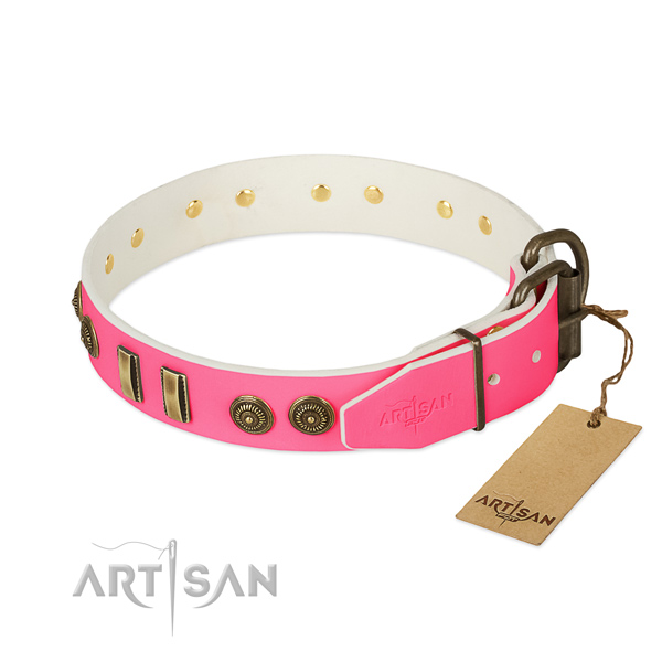 Corrosion proof hardware on leather dog collar for your canine