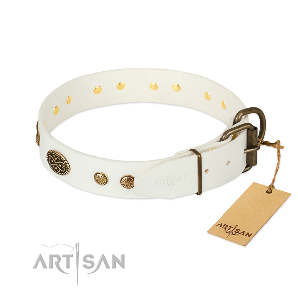 Rust resistant studs on full grain genuine leather dog collar for your canine