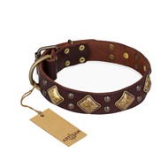 """Golden Square"" FDT Artisan Brown Leather English Bull Terrier Collar with Large Squares"