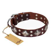 """King of Grace"" FDT Artisan Stylish Leather English Bull Terrier Collar with Old Silver-Like Plated Decorations"