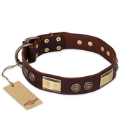 """Golden Stones"" FDT Artisan Brown Leather English Bull Terrier Collar with Old Bronze Look Plates and Circles"