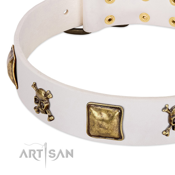 Extraordinary leather dog collar with durable studs