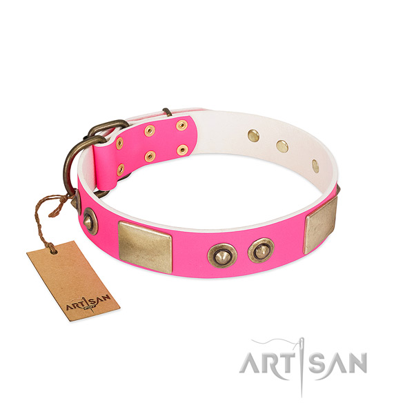Corrosion resistant adornments on full grain genuine leather dog collar for your pet