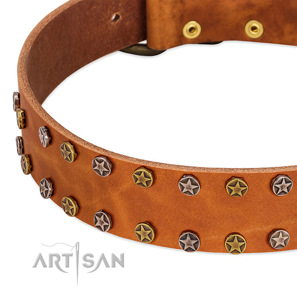 Walking leather dog collar with designer decorations