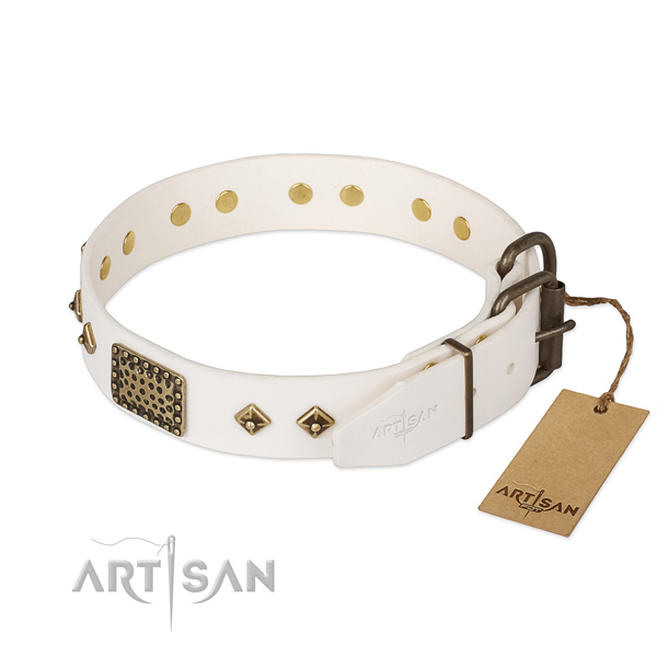 Genuine leather dog collar with strong hardware and adornments