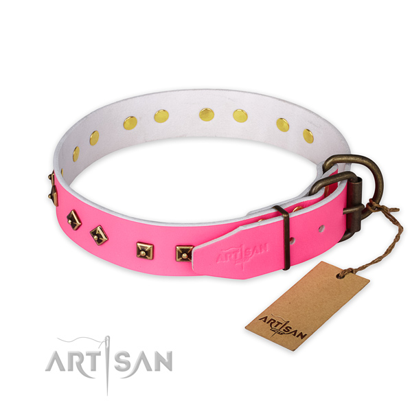 Corrosion proof traditional buckle on natural leather collar for fancy walking your pet