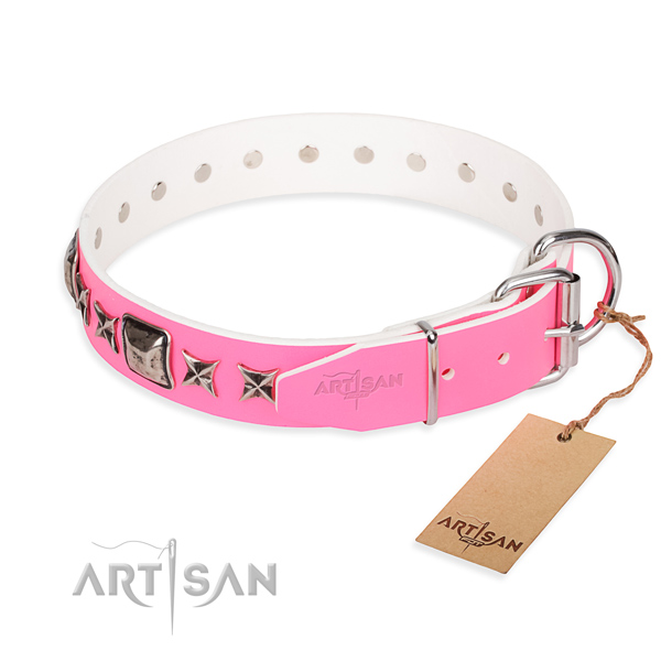 Top quality studded dog collar of leather
