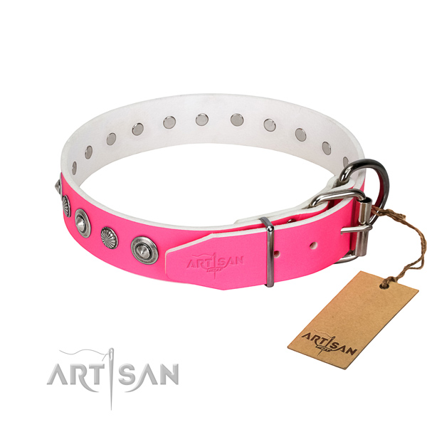 Finest quality full grain natural leather dog collar with unusual embellishments