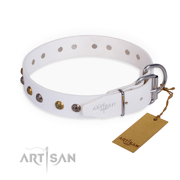 Natural leather dog collar with remarkable strong studs