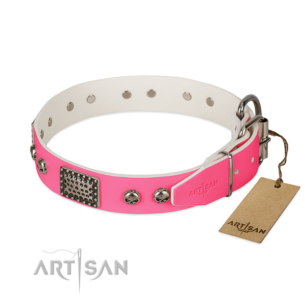 Corrosion proof adornments on daily use dog collar
