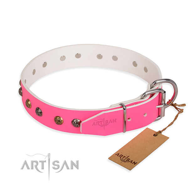 Genuine leather dog collar with fashionable corrosion resistant adornments